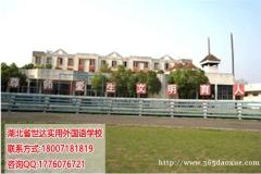 湖北省世达实用外国语学校计算机(无人机航拍方向)