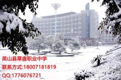 英山县草盘职业中学学校电子商务